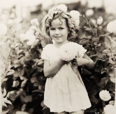 <3 Shirley Temple ~ an extremely talented little girl who thrilled the world with her acting, singing & dancing. She was the cutest little thing on the screen in her days at Hollywood, with her bouncing curls, cheeky dimpled face, and melt-your-heart-smile. She danced, sang, & tapped her way into people's hearts. Beautiful child-star.
