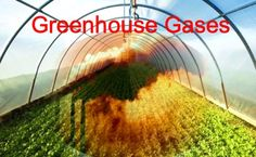 Greenhouse Gas example; smog stuck in the atmosphere.