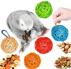 Bird Foraging Vine Balls with Hanging Clip  Assorted Colors Medium >>> Read more reviews of the product by visiting the link on the image.Note:It is affiliate link to Amazon.