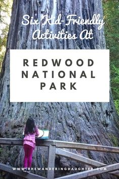 Redwoods With Kids! Kid-Friendly Ideas For Visiting Redwood National Park - The Wandering Daughter - Family Travel California Tours, California Getaways, California National Parks, Us National Parks, California Attractions, Travel With Kids, Family Travel, Weekend Getaways With Kids, Family Vacation Destinations
