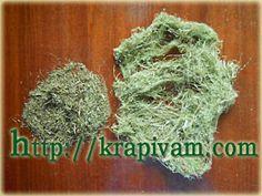 Очищаем волокна крапивы