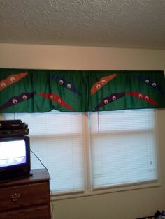 TMNT curtains
