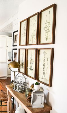 Framed Botanical Prints For The Entry - My Creative Days
