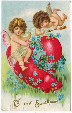 Beautiful Vintage Valentines Day Postcard Cupids on Heart Forget Me Nots Emb DB | eBay