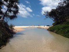 Eli Creek - Fraser Island, Aus. Fraser Island Australia, Sand Island, Ponds, Hot Springs, Worlds Largest, Sea, Spaces, Water, Outdoor
