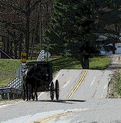 Ohio Amish Country - Christine B. © 2012