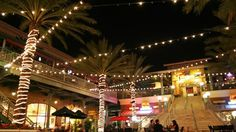 club hopping in Ybor city...frankies patio, platforms, bar, etc....