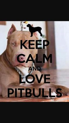 Pit-bull Lovers and Advocates - Community - Google+