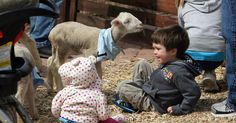 Kids interact with lambs at the baby animal barn at This Is the Place Heritage Park in Salt Lake City.