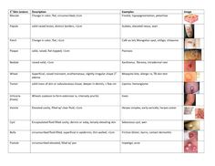 Macules vs Papules | Macule vs Papule http://www.docstoc.com/docs/48054533/NS-Quiz-husband ...