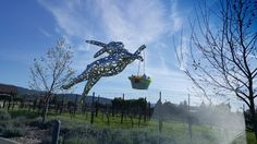 Bunny Foo Foo at @hallwines is ready for Easter.