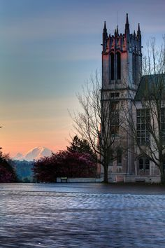 Gerberding Hall and Mount Rainier at sunrise, University of Washington, Seattle,