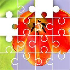 Tulip Orange Jigsaw Puzzle, 67 Piece Classic. Orange tulip, green leaves, six petals, yellow edges.  The tulip is a