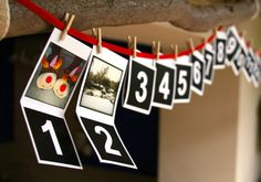 use Christmas cards to write the activity on and hang of branch etc