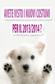 Avete Visto il Nuovi Costumi Per Il 2014? Novita in vetrina La Casa Di Carnevale.it