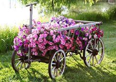 Charrette fleurie, superbe !