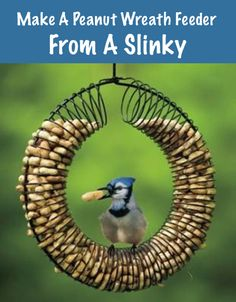How To Make A Peanut Wreath Feeder From A Slinky...http://homestead-and-survival.com/how-to-make-a-peanut-wreath-feeder-from-a-slinky/