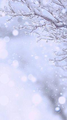 雪の画像 プリ画像