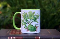 แก้วเซรามิกลายเฟินเขากวางตั้ง Thailand, Gardening, Ceramics, Mugs, Tableware, Ceramica, Pottery, Dinnerware, Cups