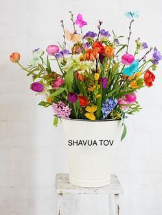 Shavua Tov Buena semana