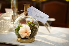 DIY terrarium wedding favor idea....could turn this into a message in a bottle type thing?