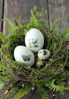 Fresh take on Easter
