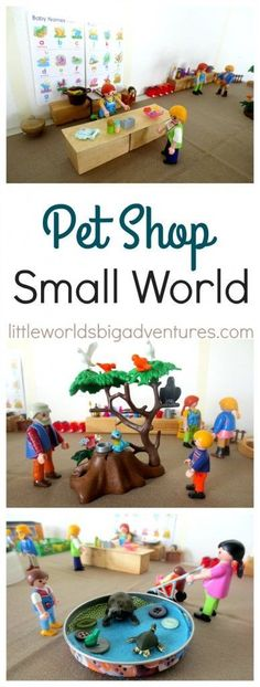 Learn all about pets through this simple pet shop small world. It's great way to explore all there is to know about getting and keeping a pet through play. Easy Preschool Crafts, Creative Activities For Kids, Rainy Day Activities, Indoor Activities, Creative Kids, Summer Activities, Kid Crafts, Daycare Themes, Small World Play