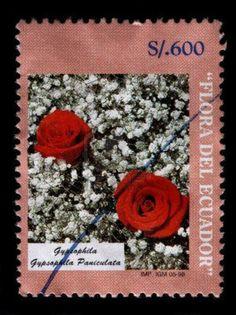 #stamps - Un sello de sucre 600 impreso en Ecuador muestra las dos rosas rojas en una cama de blanco Gypsophila paniculata, serie de Flora del Ecuador, alrededor de 1998