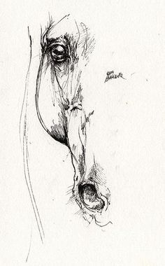 Horse Drawing - Arabian Horse Sketch 2014 05 24 D by Angel Tarantella Horse Sketch, Drawing Sketches, Art Sketches, Sketching, Horse Drawings, Animal Drawings, Art Drawings, Painting & Drawing, Pintura Country