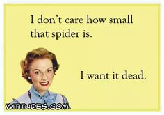 i-dont-care-how-small-that-spider-is-i-want-it-dead-ecard