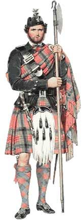 Scot wearing kilt - The Carolina Tartan was recognized as the official tartan of the state in 2002.
