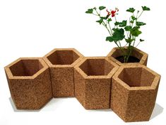 Cork hexagonical flower pot designed by The Swedes.