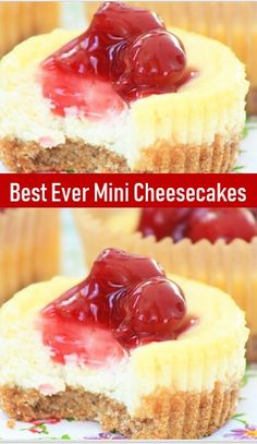 Best Ever Mini Cheesecakes – Yumminess! Chocolate Cookie Recipes, Easy Cookie Recipes, Dessert Recipes, Desserts, Chocolate Cheesecake, Homemade Chocolate, Keto Recipes, Mini Cheesecake Recipes, Homemade Cheesecake