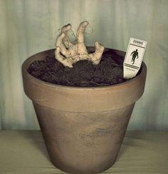 Que tal plantar um zumbi? #decoracao #geek #zumbi