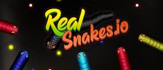 Play Real Snakes.io the game online for free on BrightestGames.com Fun Math Games, Games To Play, Snake Game Google, Play Snake, Snake Free, Small Snakes, All About Snakes, Sea Monkeys, Game Interface