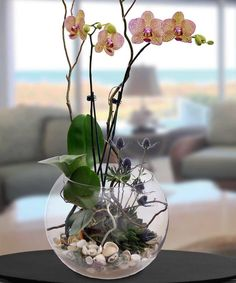 Masterfully created like only the artisans at Benava Flowers can! This statement piece encompasses the natural beauty of Florida. The large aquarium is filled with live orchids and live succulents, complimented with Sarasota sand and shells from. Orchid Terrarium, Orchid Planters, Fall Planters, Ikebana, Orchid Flower Arrangements, Orchid Centerpieces, Indoor Orchids, Orchids Garden, Artificial Orchids