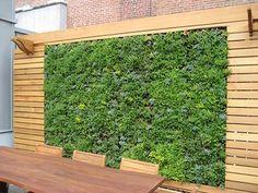 verticale_tuin_06_vegetal_wall_www_agreenroof_com.jpg 400×300 pixels