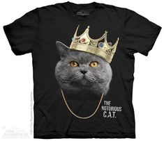 mountain tshirts mens and womens adult tee with notorious cat design. Cute Tshirts, Cool T Shirts, Mountain Designs, Plus Size Shirts, Tees For Women, Classic T Shirts, Sport, Cats, Mens Tops