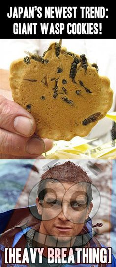 must-see-imagery-wasp-cookies