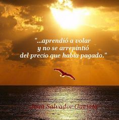 """""""...aprendió a volar y no se arrepintió del precio que había pagado."""" · Juan Salvador Gaviota ·"""