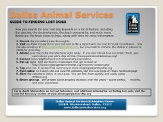 Lost your dog? Here's a step by step guide to help you find him. Losing A Dog, Losing You, Find Pets, Dog Quotes, Lost & Found, All Dogs, Helpful Hints, Your Dog, Tips