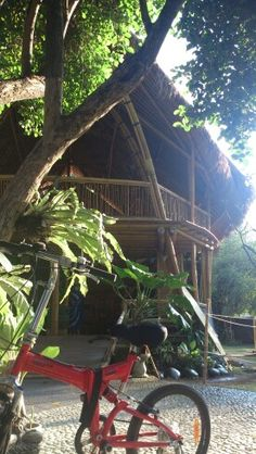 My ride and my yoga studio this morning at The Power Of Now - Sanur, Bali.