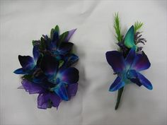 boutineers and corsages | ... of g10 blue orchids for him and her corsages boutonnieres wallpaper