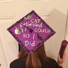 Great Graduation Cap Black Adorable Dog - 02865188fe78f41c72a6512ce60405c1--graduation-caps-for-cats  Trends_792346  .jpg