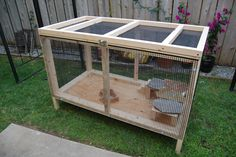 bearded dragon outdoor cage. Thinking about making one of these when I get my new dragon. R.I.P Francis