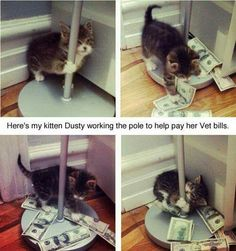 Stripping to pay its Vet