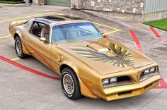 1978 Pontiac Trans Am Y88 GOLD EDITION - Matching Numbers Click to Find out more - http://fastmusclecar.com/1978-pontiac-trans-am-y88-gold-edition-matching-numbers/ COMMENT.