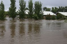 flood in loveland colorado | Colorado, Flood, loveland, Flooding, Water
