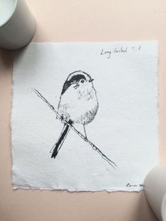 Long-tailed Tit Ink Sketch by Kate Walters