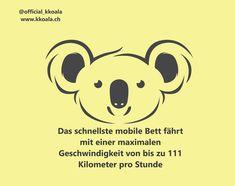 #impressive #seelion #koala #sleep #printerest #sleeping #pillow #online #schlaf #shop #onlineshop #fun #love #animals #fact #facts #animal #swimming #tier #tiere #geschäft Schnauzer Art, Modern Wall Decor, All You Need Is Love, Switzerland, Snoopy, Sleep, Art Prints, Instagram Posts, Ootd